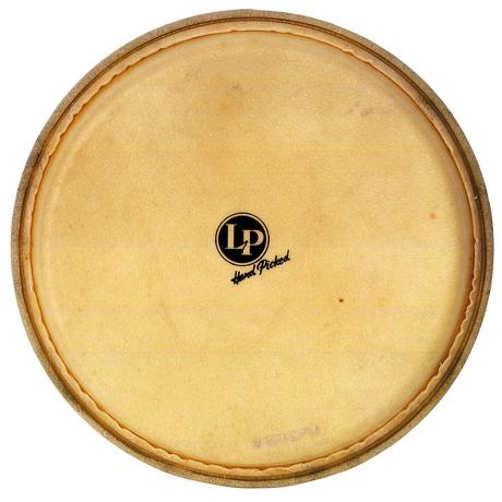 LATIN PERCUSSION 14'' GALAXY DJEMBE REPL. HEAD